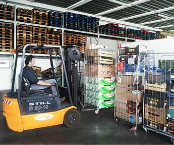 Distribuzione prodotti alimentari freschi